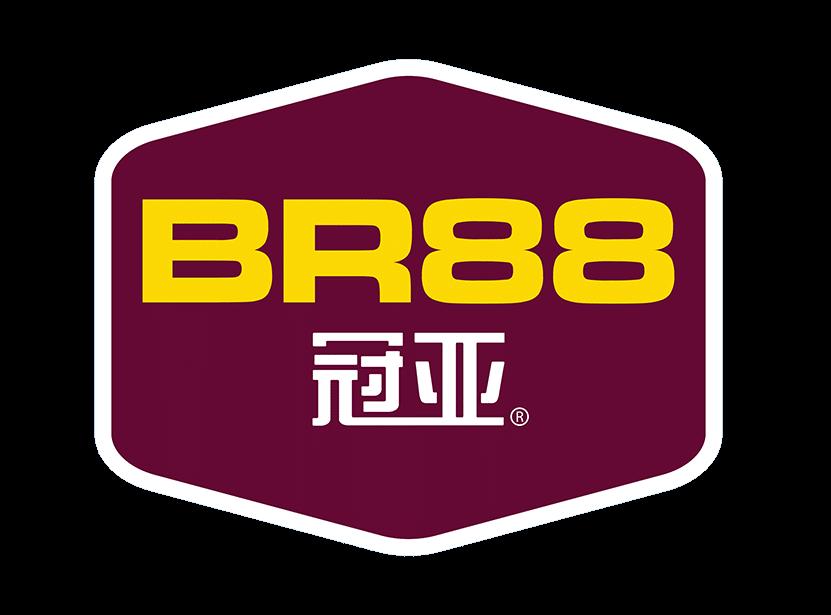 BR88-LOGO